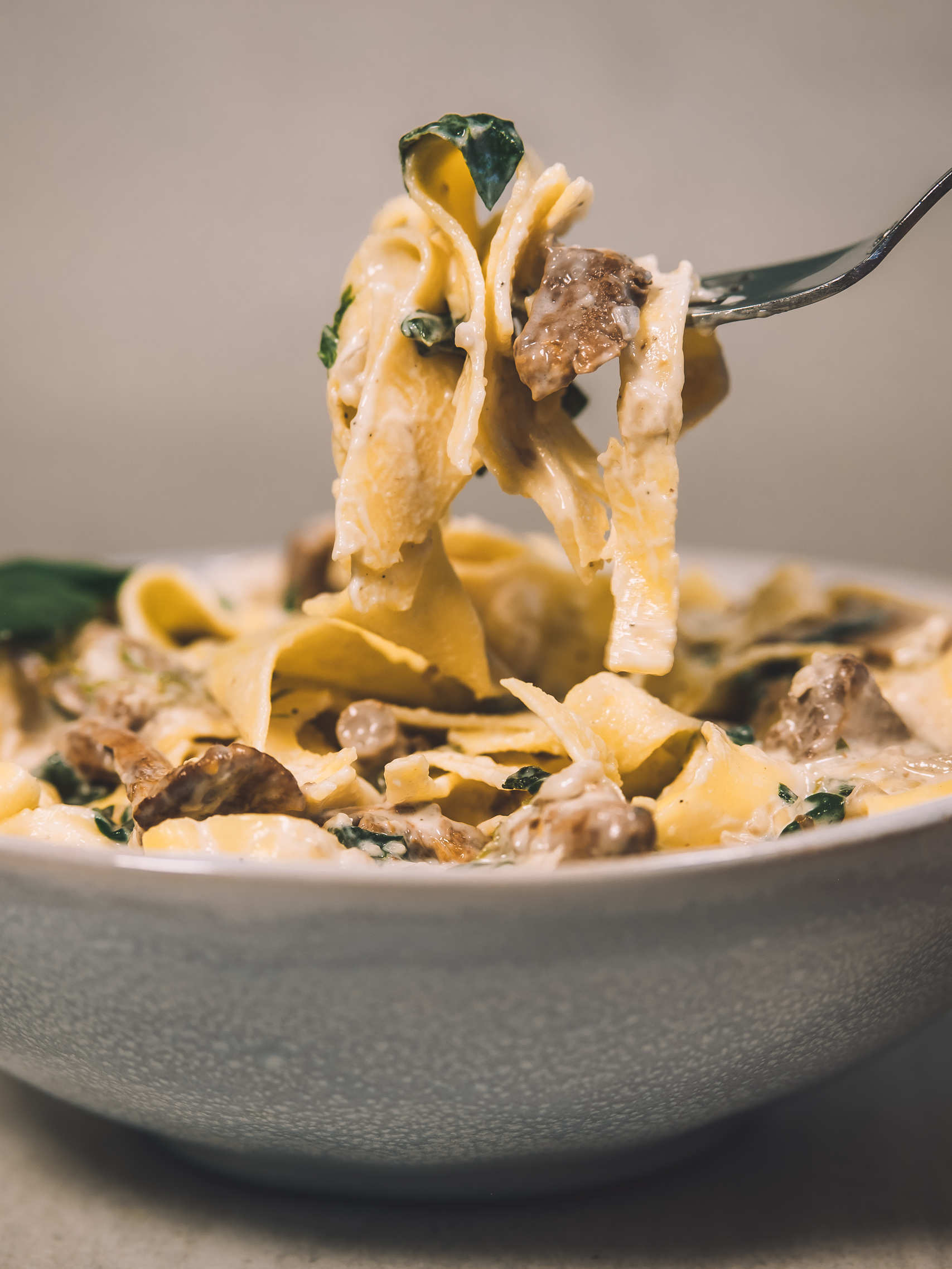 Creamy pasta with chanterelles