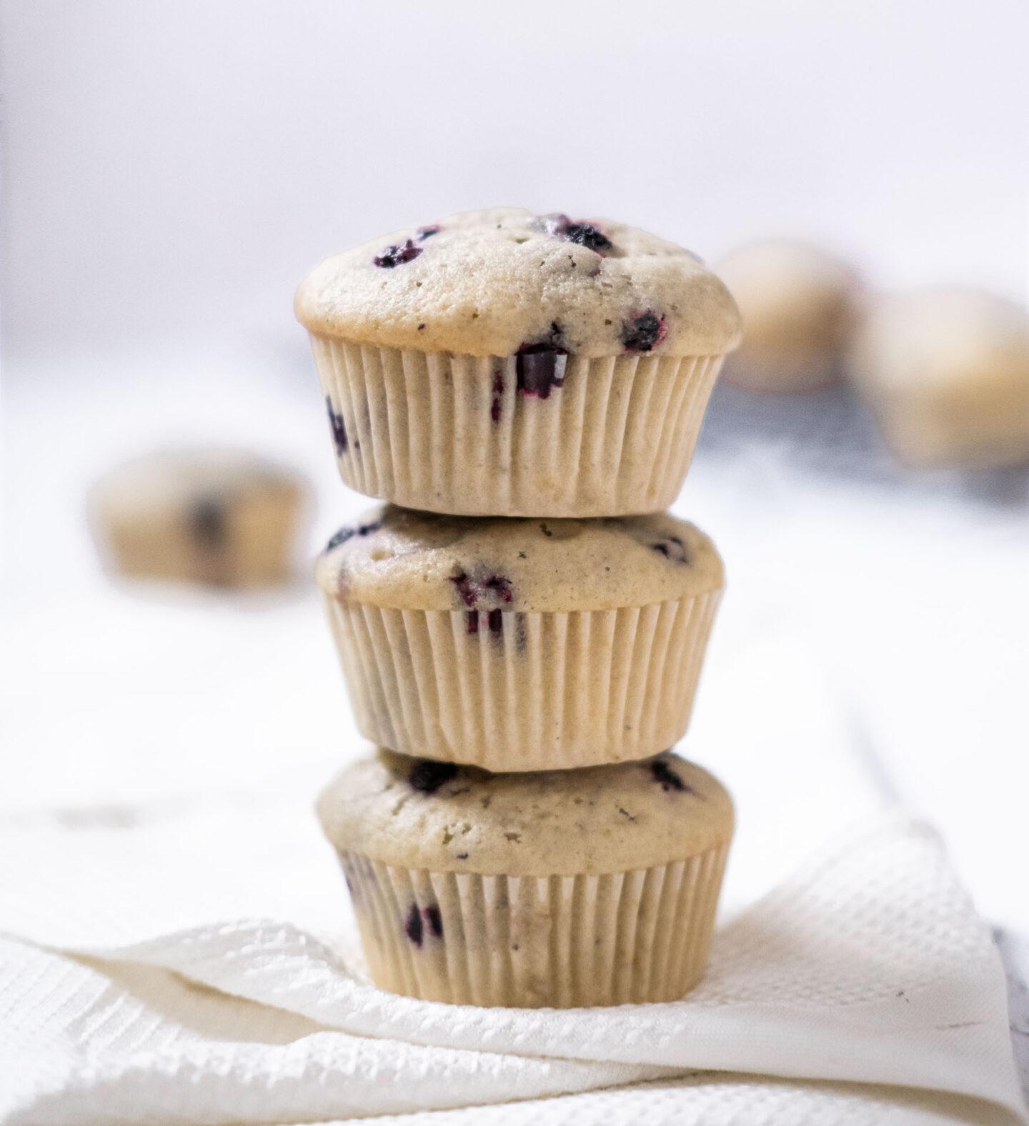 Veganska muffins recept blåbärsmuffins